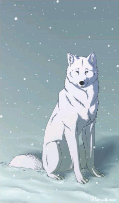 Luna Wolfie