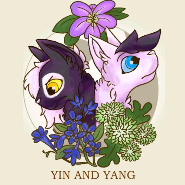 Official  YinYang :3