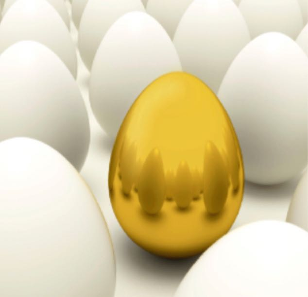 An Unusually Valuable Egg