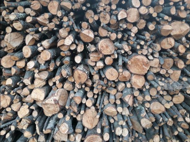Wood -( COMFORTABLE WALLPAPER )-