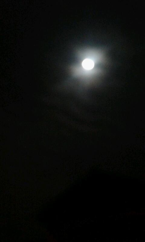 Midnight, Moonlight, Magic