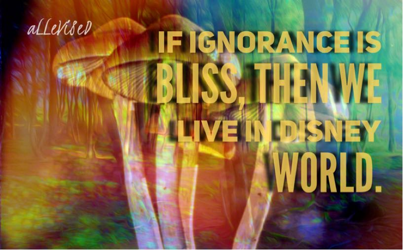 Mushrooms: Enlightenment or Insanity?
