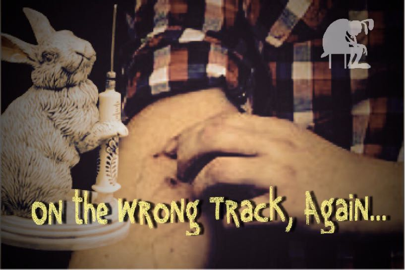 On the Wrong Track, Again...