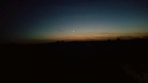 An Evening Symphony