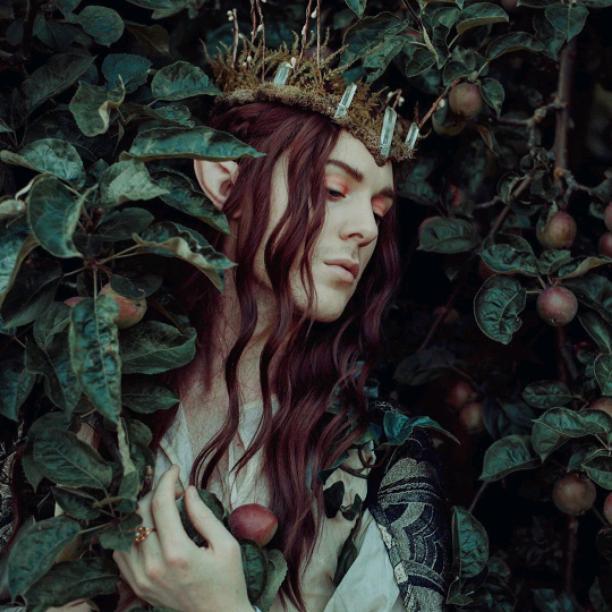 Fairy  King ??