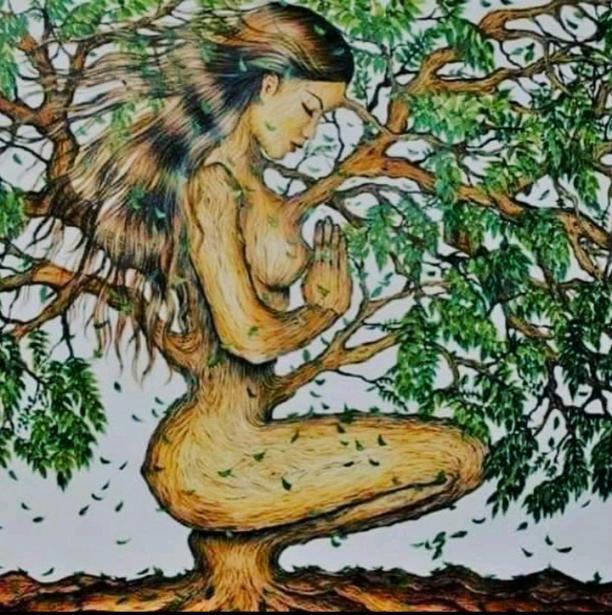 Tree vs Life