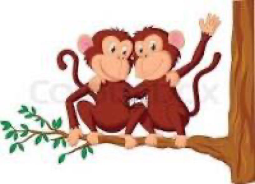 The hard working monkeys