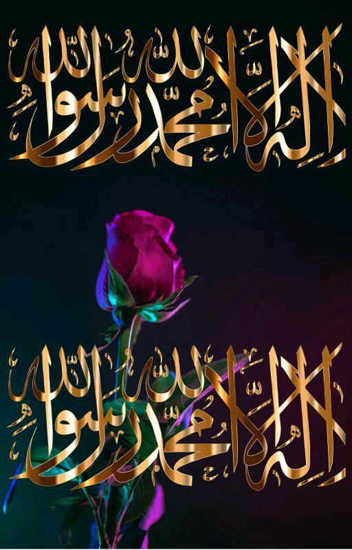 What he (PBUH) said; what Allah said
