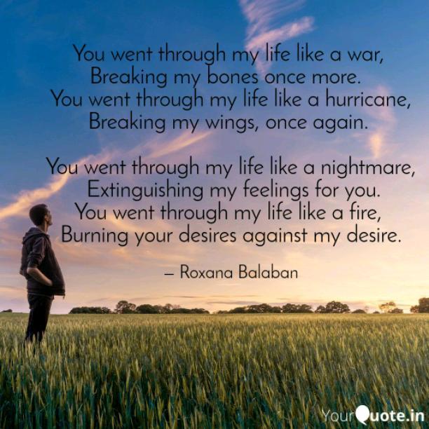 You went through my life