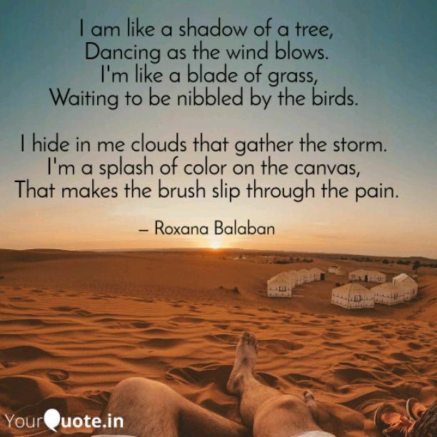 I am like a shadow