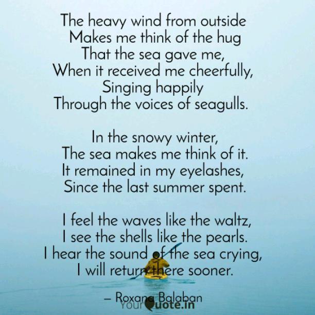 Seagulls and sea
