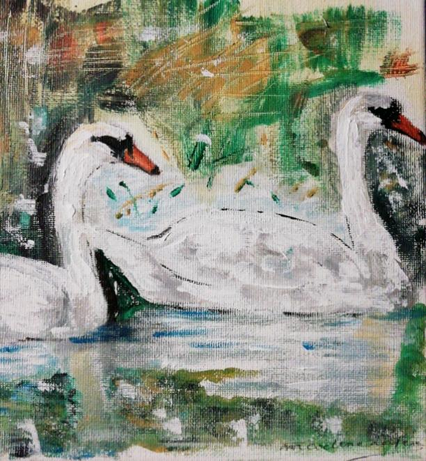 The two swans