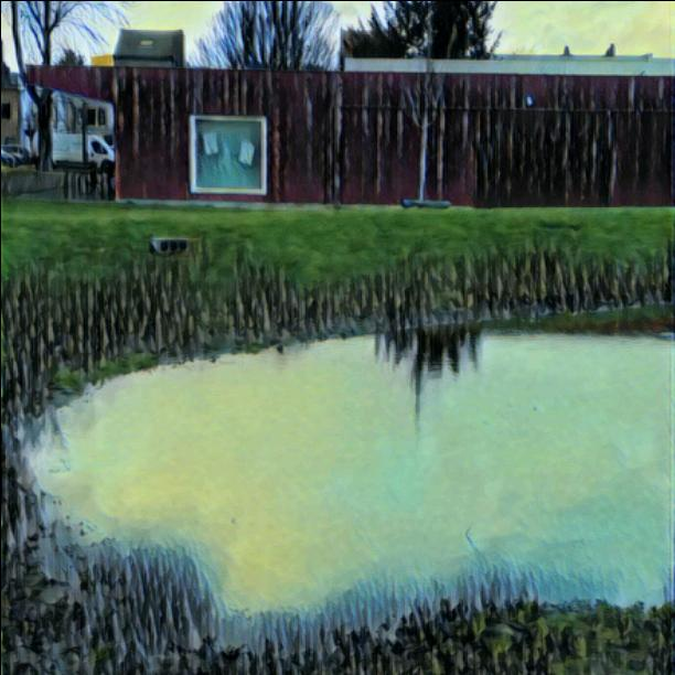 A mysterious pond