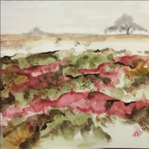 A sandy plain
