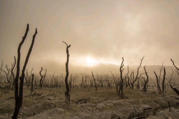 OverBarren Desert