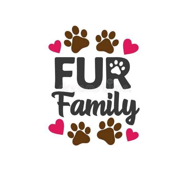 June 6th. 2021; My fur family