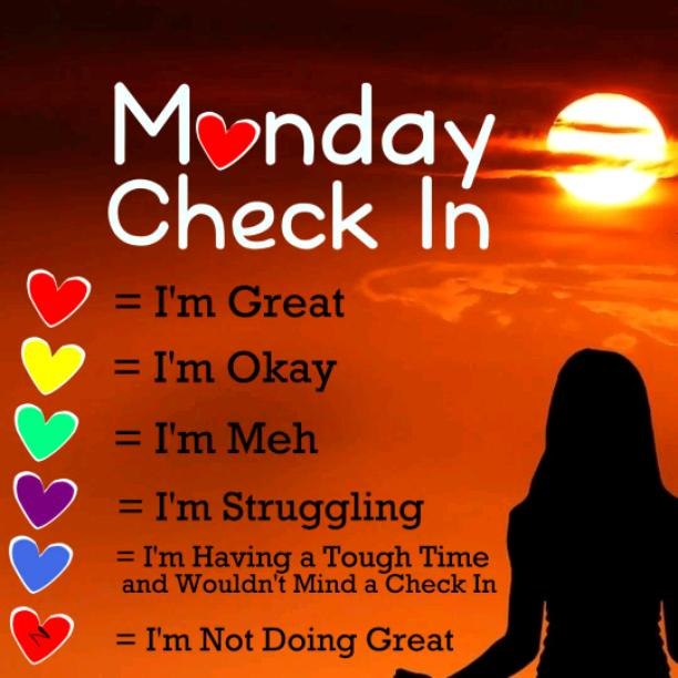 Monday Check In