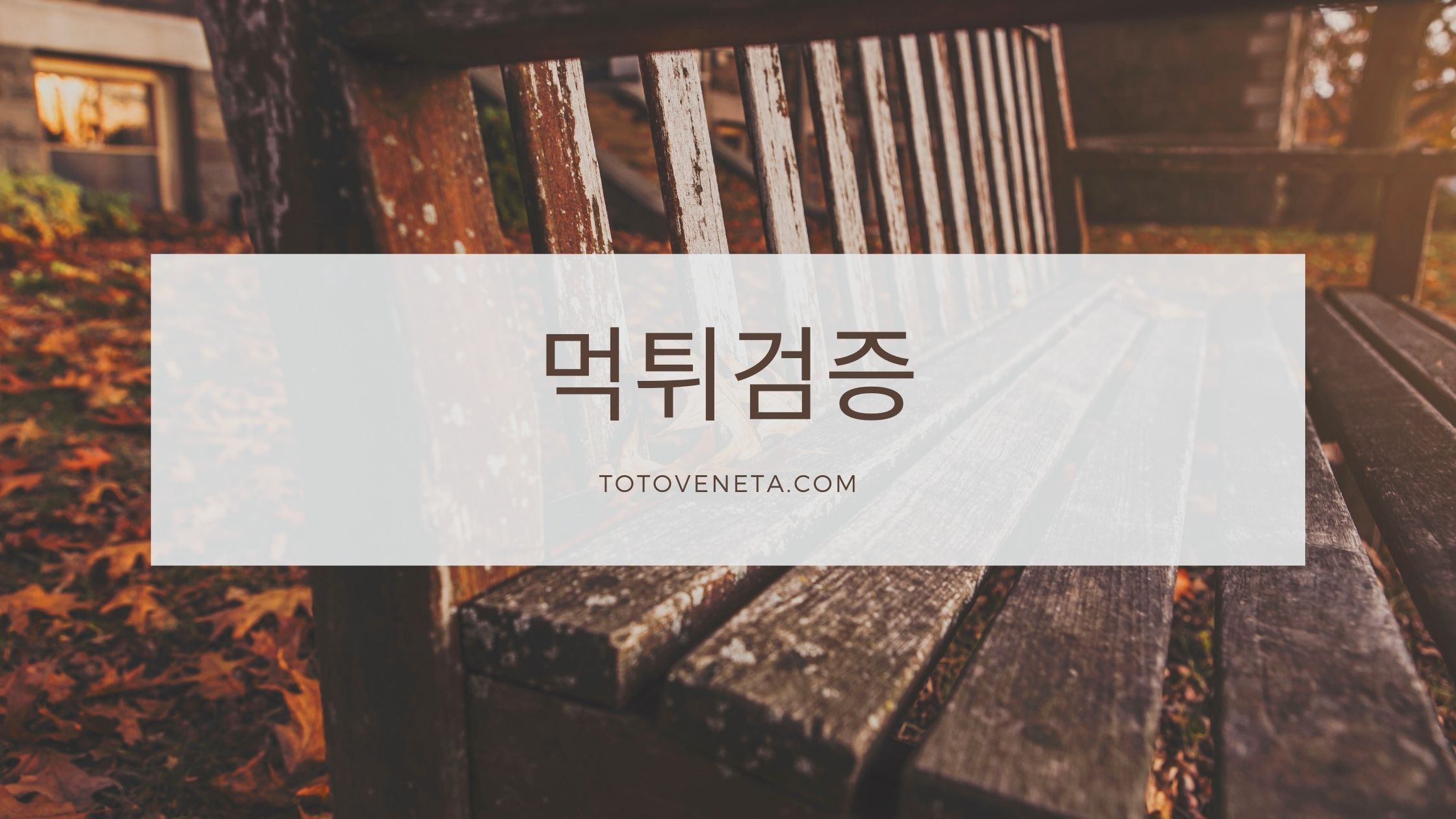 TOTO Sports Betting Site in Korea Teaches Online Gambling
